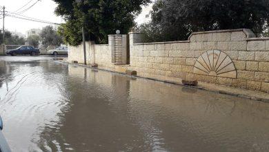 تجمعات مائية في إربد -(الغد)