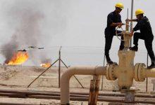 انبوب النفط