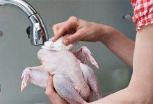 غسل الدجاج