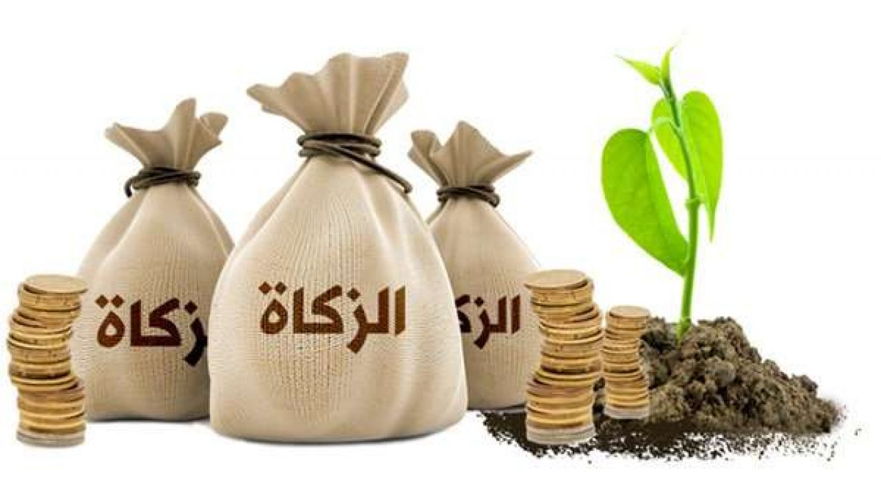 قريبا..  الأوقاف  تنهي ترتيبات الدفع الإلكتروني للزكاة - Alghad