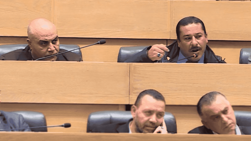 نواب في البرلمان