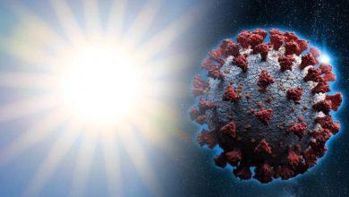 ن الموجة الحارة الحارقة هذا الأسبوع يمكن أن تساعد في خفض معدلات انتقال الفيروس التاجي لأن أشعة الشمس القوية