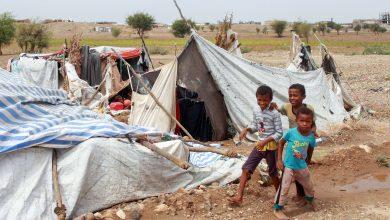 حذرت الفاو من مجاعة عالمية بسبب كوفيد-19