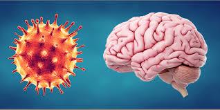 لمرضى الذين شخصت إصابتهم بأمراض عصبية لم يكن لديه أثر لفيروس كورونا المستجد في سائل النخاع الشوكي