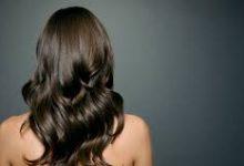 الشعر الصحي